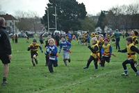 U8's v Hastings & Burgess Hill 2013